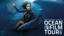 Ocean Tribute Award Vol 6 / Foto: © International OCEAN FILM TOUR