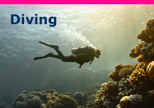 diving, diving destinations, diving equipment & dive holiday