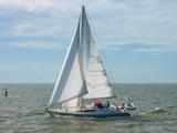 aluminium custom built 47 ft tipsy tuna 1