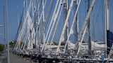 Harbor Hutting Yachts