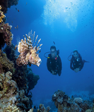 Open Water Diver Course – Phuket