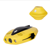 CHASING DORY underwater drone + buoy