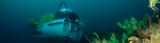 DeepSee Submersible