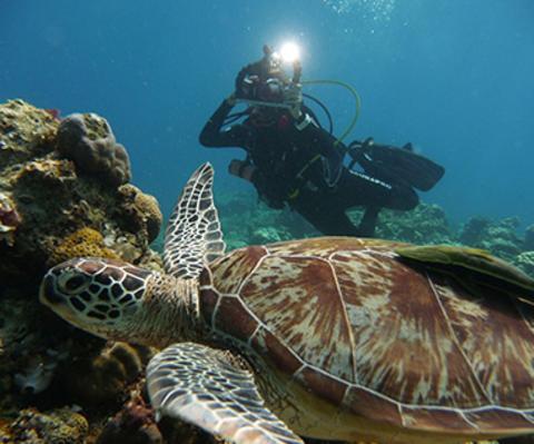 Advanced Open Water Diver Course PADI / SDI