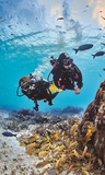 Discovery (Scuba) diving for beginners