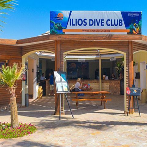 Ilios Dive Club - ONE with the Red Sea