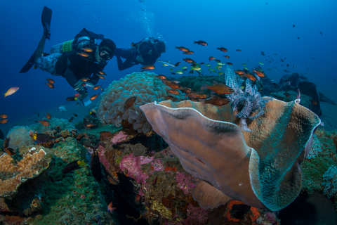 Advanced Diving Courses