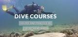 Deep Blue Dive Academy