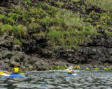 GUIDED KAYAK & SNORKEL
